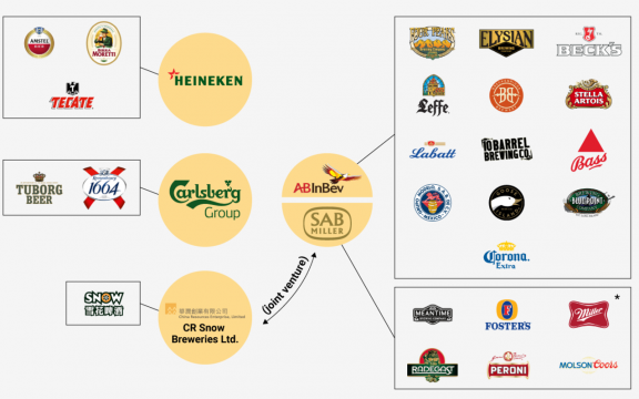 5 largest beer company